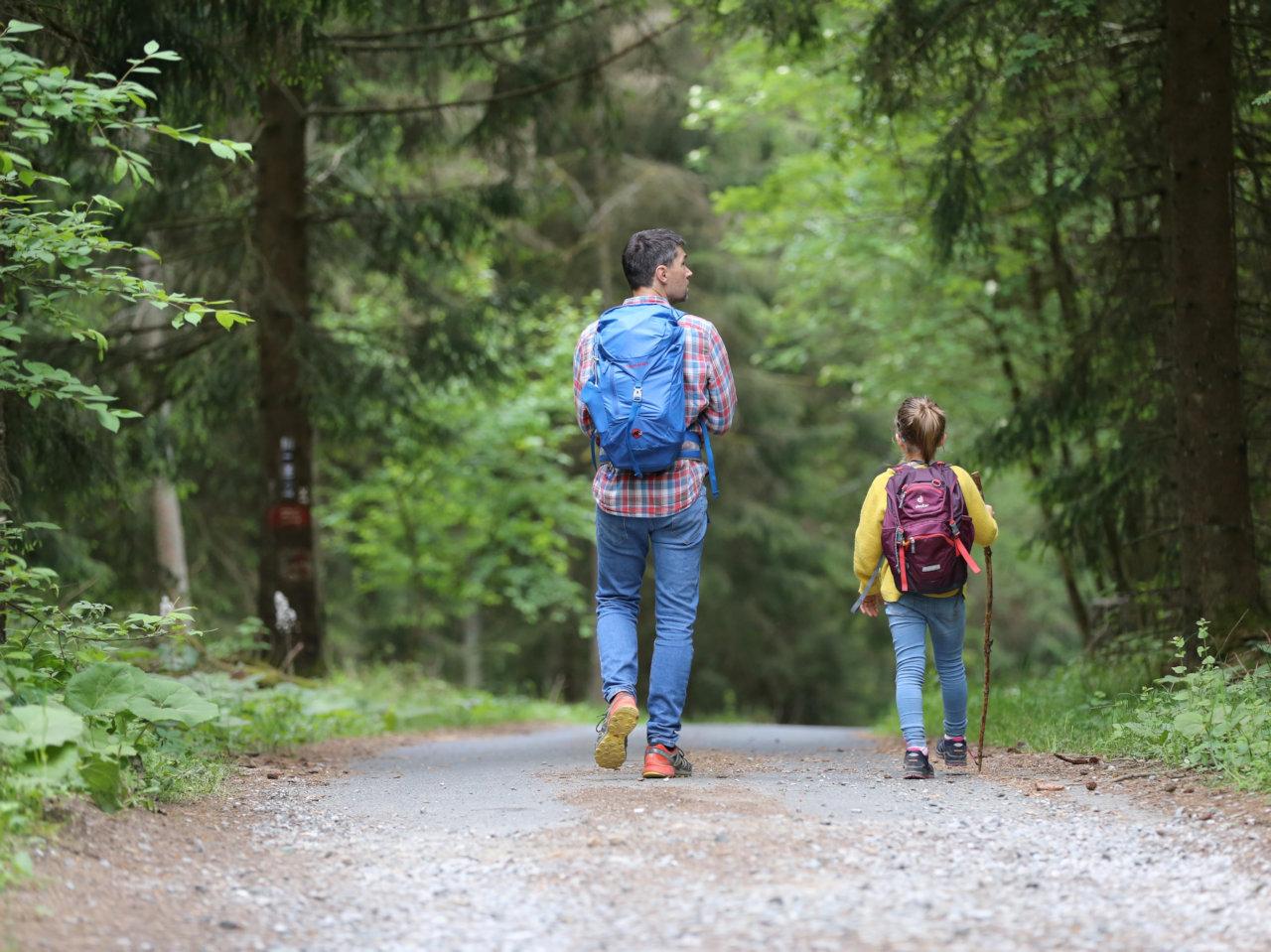 Positive vs. Toxic Parenting Tips by Dr. Gabor Maté